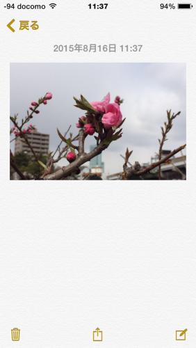 iOS_memo_b
