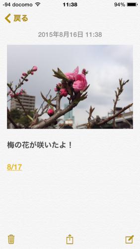 iOS_memo_d