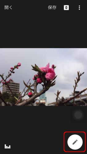 Snapseed_c