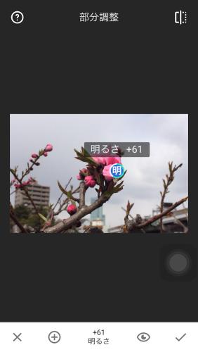 Snapseed_j