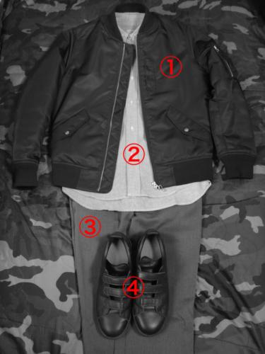 ma1-coordinate_d