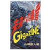 とりあえずタダだから買っておけ!! 「GIGAZINE 未来への暴言 Kindle版」