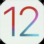 快適に動く!? iPad mini 2にiOS12パブリックベータ版をインストールする【追記あり】